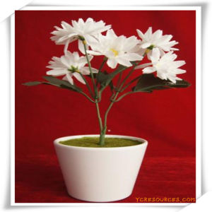 PU Simulation Flowers Plant for Decoration pictures & photos