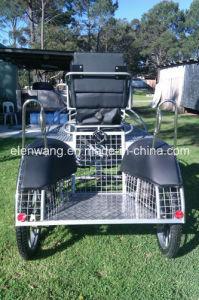 Competition Marathon Horse Carriage Horse Cart (GW-HC37-13#) pictures & photos