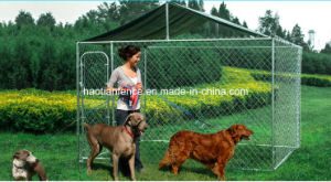 Chain Link Outdoor Dog Kennel with Roof for Wholesale pictures & photos