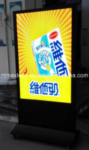P5 Indoor Advertising LED Display pictures & photos