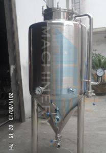 500L Homebrew Conical Fermenter, Home Brewing Equipment Beer (ACE-FJG-7H) pictures & photos