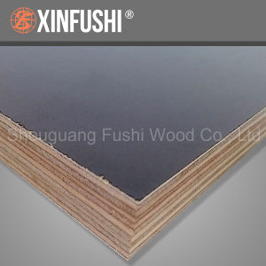 High Quality Formwork Film Faced Plywood Australia F17 pictures & photos