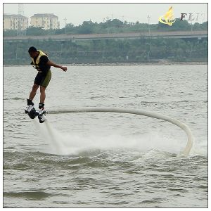 Top Quality China Factory Flyboard pictures & photos
