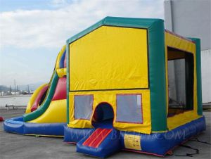 Inflatable Combo, Inflatable Bouncer with Slide (B3049) pictures & photos