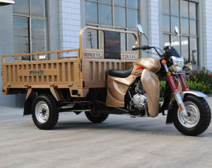 High Quality Three-Wheel Cargo Tricycle with Cargo pictures & photos
