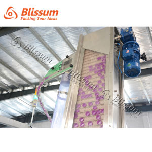 Full Automatic Plastic Bottle Purified 3-in-1 Water Production Line pictures & photos