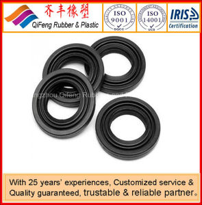Oil Seal Ring pictures & photos