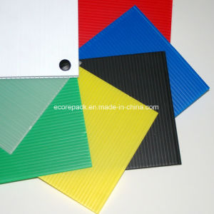 Corrugated Plastic Boards pictures & photos