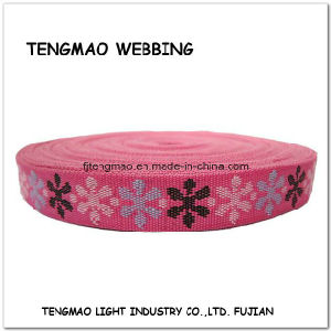 50mm Fuschia Polyester Webbing pictures & photos