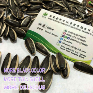 Hot Sale Chinese New Sunflower Seeds 363 to All The World pictures & photos