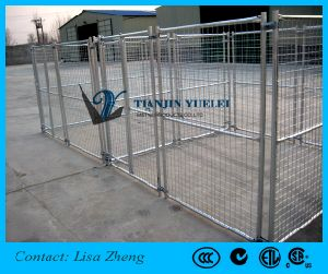 out Door Heavy Duty Dog Kennels/Dog Cage Hot Sale 2016 pictures & photos