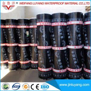 Roofing Building Material Sbs /APP Modified Bitumen Waterproof Membrane