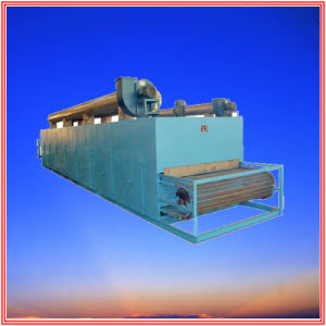 Continuous Mesh Belt Dryer/ Vegetable Dryer for Drying Nuts pictures & photos