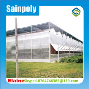 Hydroponics Agriculture Plastic Film Greenhouse pictures & photos