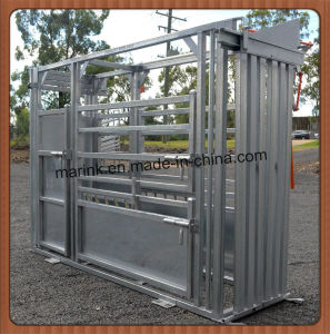 Powder Coated Cattle Custom Crush Hot Sale pictures & photos