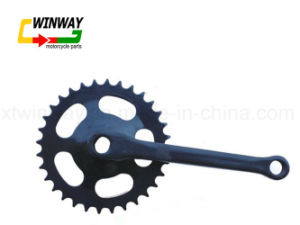 ED Bicycle Parts Chainwheel Crank for Bicycle pictures & photos