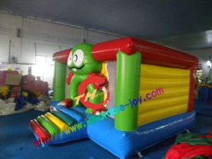 Inflatable Bouncer House for Family Use (TH-WJ008) pictures & photos