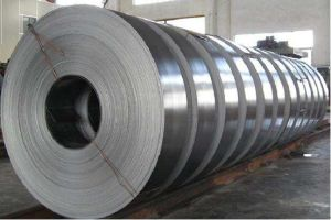 Professional Manufacturer Stainless Steel Strips (AISI316) pictures & photos