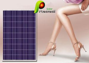 Mono Solar Panel/Mono Solar Module/Monocrystalline Photovoltaic Solar Pnel
