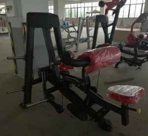 Popular Hoist Body Building Equipment Biceps Curl (SR2-09) pictures & photos