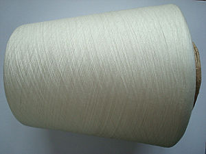 Recycled Polyester Tencel G100 Blenched Yarn pictures & photos