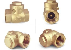 Stainless Steel Brass Spring Check Valve (VG12.90081)