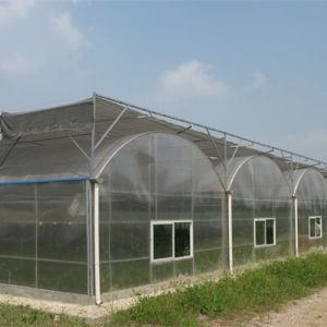 Multi-Span Gothic Film Greenhouse with Pep Drop-Proof pictures & photos