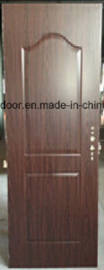 Glass American Steel Door (EF-A006) pictures & photos
