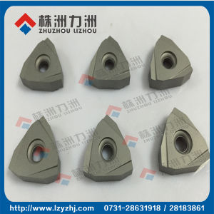 Tungsten Carbide Insert for Processing Hard Materails pictures & photos