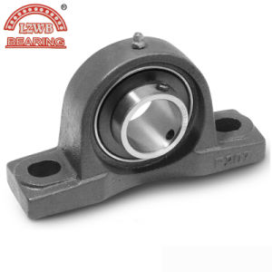 Competitive Price Pillow Block Bearing with Professional Equipments (UCPA204) pictures & photos