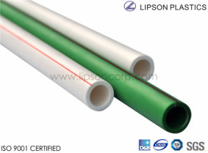 PN 12.5/ PN 16 PPR Pipe for Hot Water pictures & photos