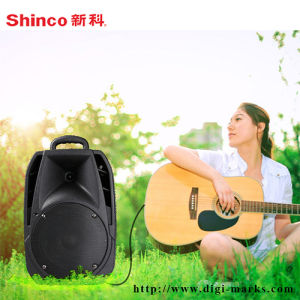 8 Inch Professional Outdoor Stereo Bluetooth Speaker pictures & photos