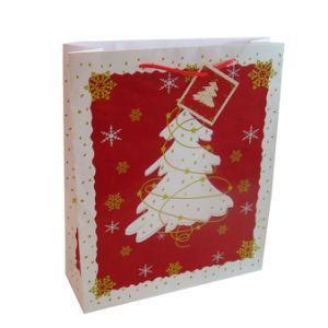 Christmas Gift Bag (XG-PB-061)