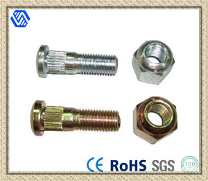 Wholesale Wheel Lug Bolt Nut pictures & photos