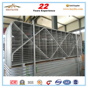 China Whosale Hot DIP Galvanized Durable Farm Gates pictures & photos