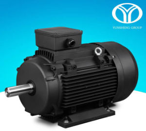 Permanent Magnet AC Synchronous Motor (22kw, 30kw, 380V-50Hz) pictures & photos