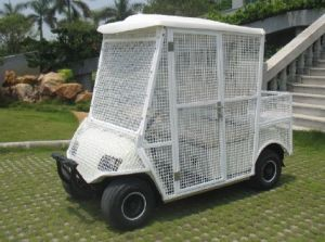 2 Seater White Elctric Pick-up Ball Car pictures & photos