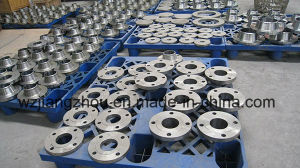 Forging Stainless Steel Plate Flange pictures & photos