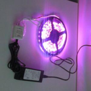 LED RGB Flexible Strip Light CE Approval