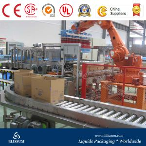 Automatic Beverage Bottle Carton Packaging Machine pictures & photos