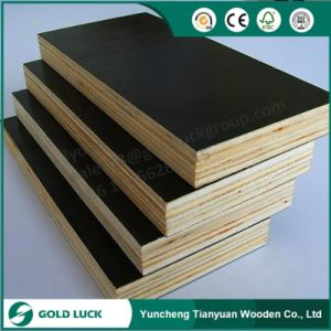 18mm Exterior Plywood for Sale / Film Faced Plywood pictures & photos