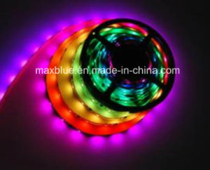 DC12V 30LEDs/M Ws2811 Digital LED Strip Light pictures & photos