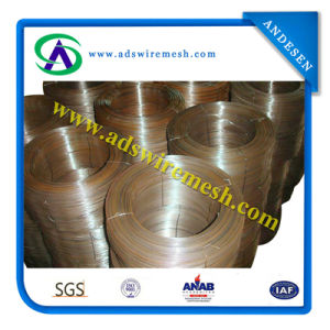 Black Wiire / Annealed Wire / Hardware Wire (hot sale & factory price) pictures & photos