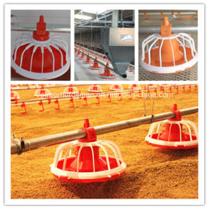 Full Set Automatic Poultry Farm Equipment for Chicken House pictures & photos
