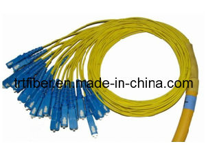 SC 24 Fiber Cores Fiber Optic Patch Cable pictures & photos