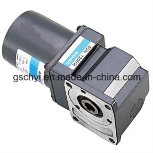 GS High Quality 80mm Worm Gear Angle Motor pictures & photos