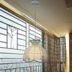Creative Flower Basket Pendant Lamp (GD-1045A-1) pictures & photos