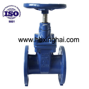 BS5163 Resilient EPDM Rubber Seat Gate Valve
