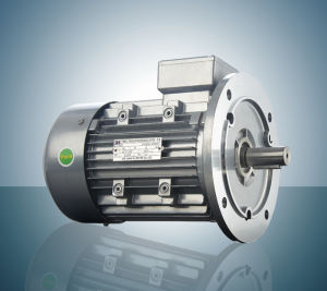 Three Phase Use for Machine Electric Motor Asynchronous Motor pictures & photos