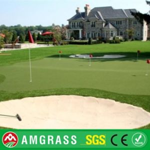 Golf Chinese Artificial Turf and Synthetic Lawn pictures & photos